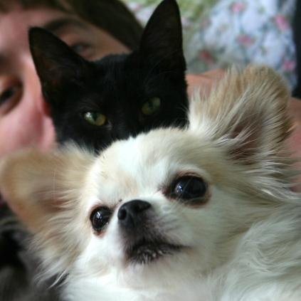 Viola & Rikku